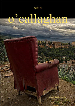 1a0b0eed4543f An Instant Classic By Sean O Callaghan (collective effort press ...