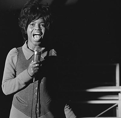 pparnold tv