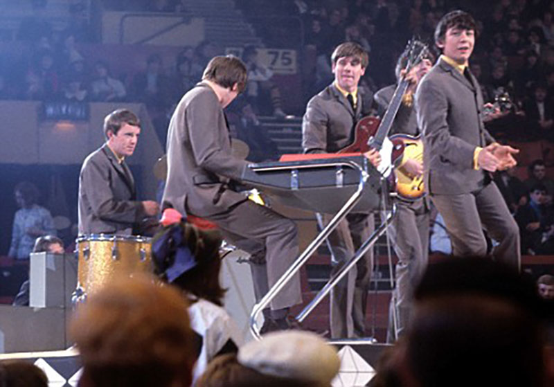 the animals 1964